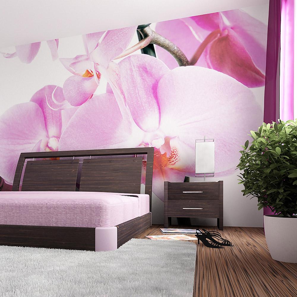 Фототапет Стандарт 360×254 см, 4ч., орхидея виолет