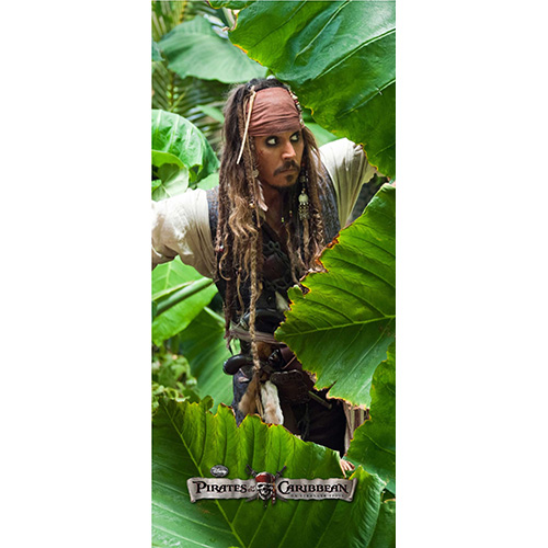 фототапет Disney Креатив Вер. 90×202 см, 1ч., Карибски пирати