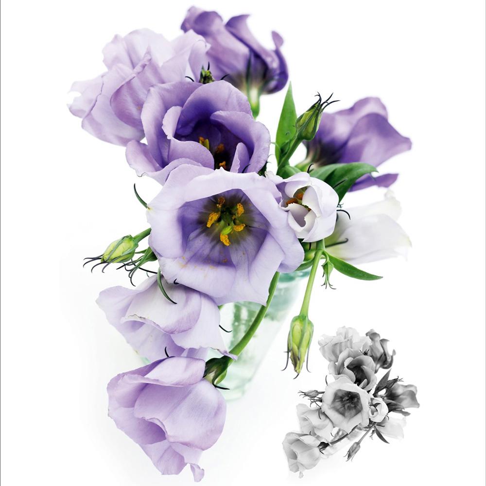 Стикери A&G 65×85 см, 1ч., рози